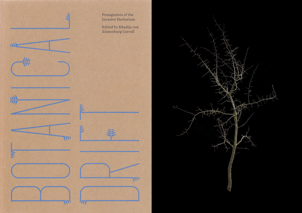 Botanical Drift – Exhibition and Book launch – Motto Berlin